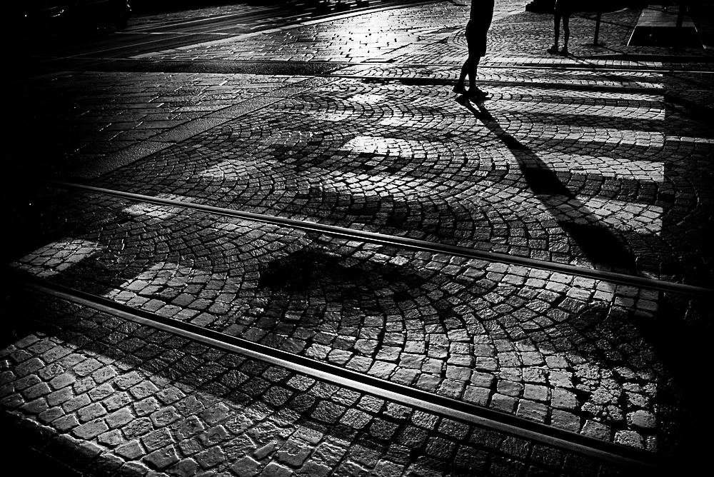 lines concept gallery marco espertini